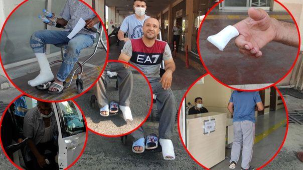 Şanlıurfa'da yüzlerce acemi kasap hastanelik oldu!