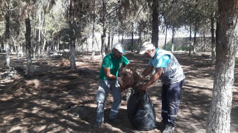 Viranşehir Belediyesi ormanlık alanları koruyor