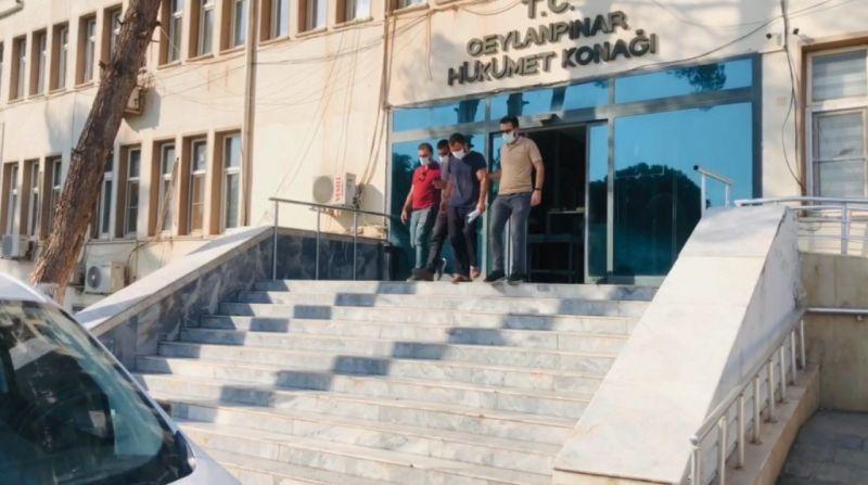 Şanlıurfa'da fıstık çalan hırsızlar tutuklandı!