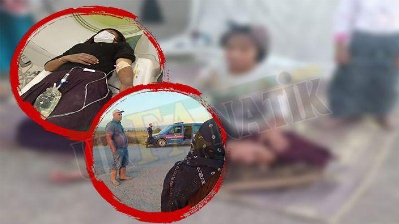 Urfalı 5 tarım işçisi yaralanmıştı: Valilikten flaş açıklama
