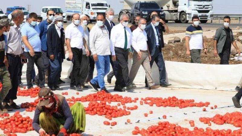 Diyarbakır Valisi Karacadağ'daki Urfalı işçilerle buluştu