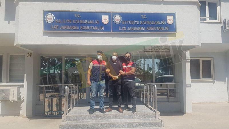 Şanlıurfa'da yakalanan terör örgütü üyesi tutuklandı