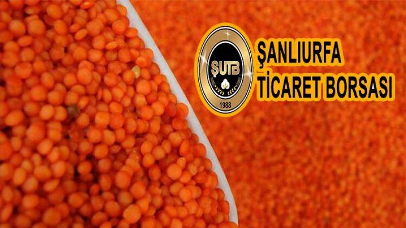 Şanlıurfa'da kilosu 8,60 liradan satıldı