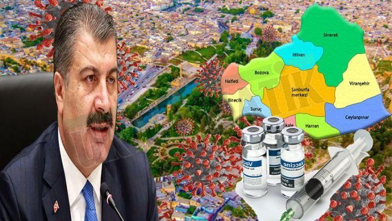 Bakan Koca duyurdu: Türkiye'nin tek kırmızı şehri Şanlıurfa