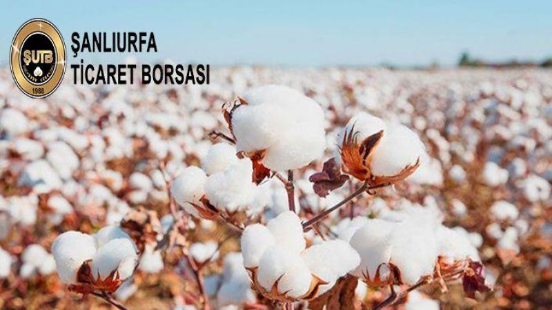 Şanlıurfa'da kilosu 15,05 liradan satıldı
