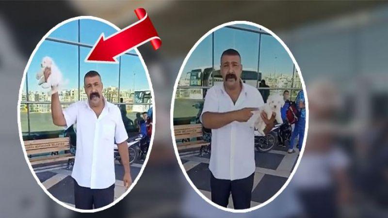 Sosyal medya Urfa'daki bu videoyu konuşuyor