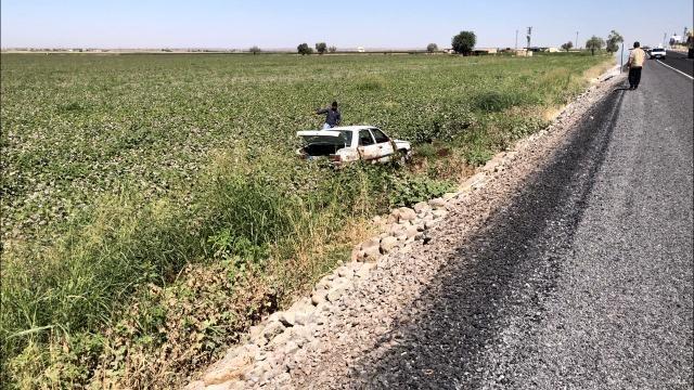 Urfa'da köpeğe çarpmamak için takla attı: 1 yaralı
