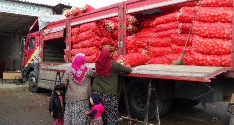 Soğan stokçuları ve soğandaki mantar hastalığı esnafı da olumsuz etkiledi
