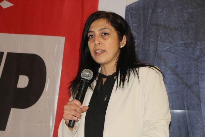 CHP'li Özlem Ekiz'den 10 Ocak Çalışan Gazeteciler Günü mesajı