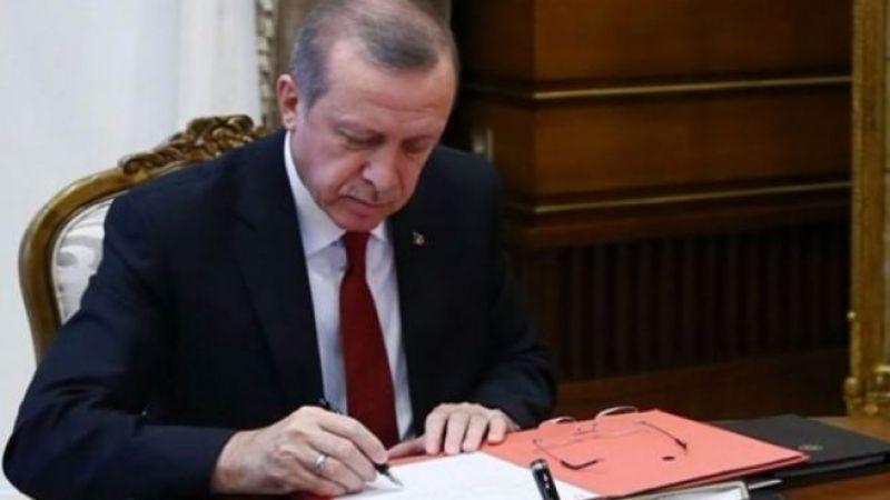 Erdoğan'dan ABD'li Cargill ve Amylum şirketlerini sevindirecek karar! NŞB kotasını yüzde yüz arttırdı