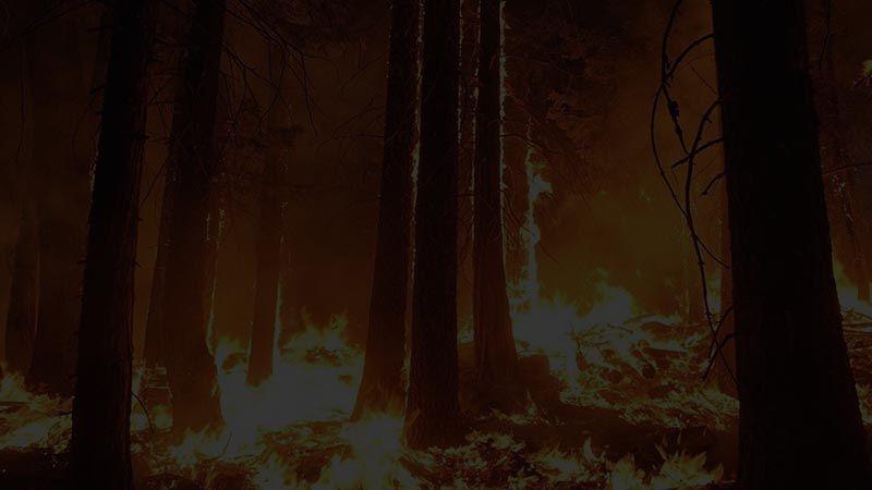 Marmaris'ten acı haber! Orman yangınında 1 personel şehit oldu