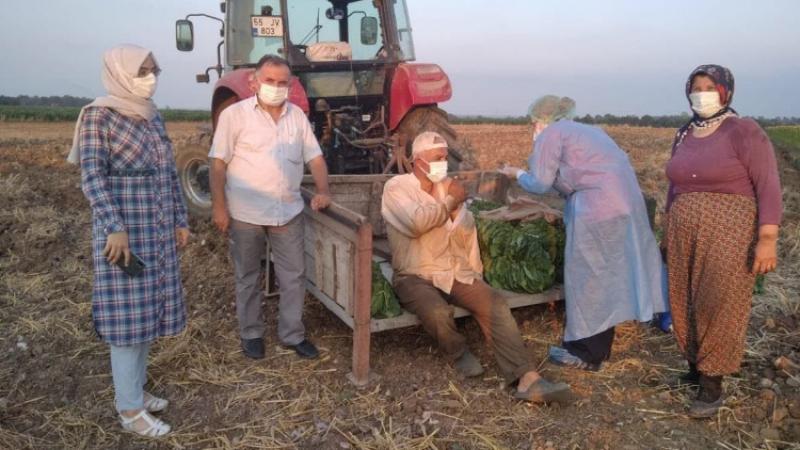 Sağlık ekipleri, tarım işçilerine tarlada aşı yaptı