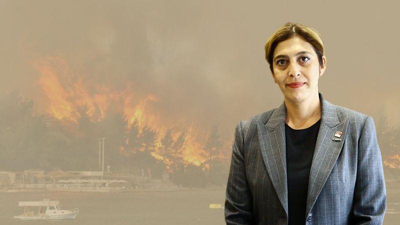 CHP'li Ekiz: Özel aracınızı kargoyla yanınızda taşıyorken bizim yangın uçağımız niye yok?