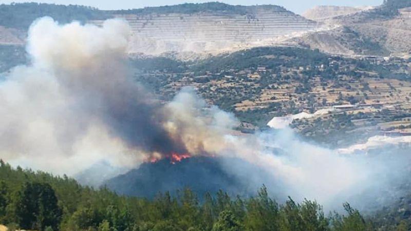 Orman yangınları Aydın'a sıçradı