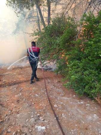 Alkışlar Aydın Büyükşehir İtfaiyesine: Memleket yangın yeriyken onlar uyuyamadı