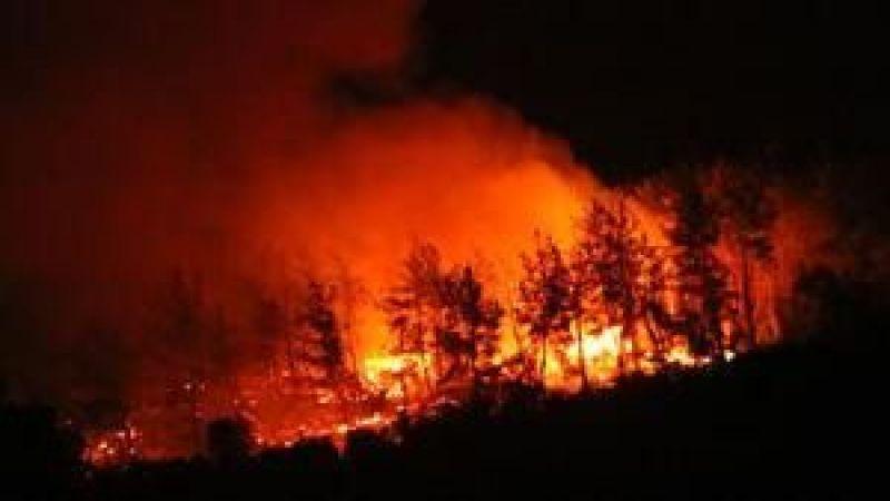 Bozdoğan'da çıkan orman yangını ilerliyor! İki mahalle boşaltıldı
