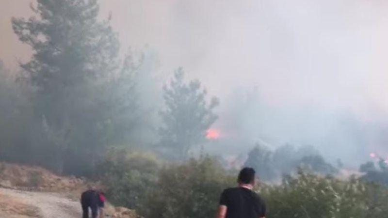 Yatağan'dan başlayan yangın Çine'ye sıçradı