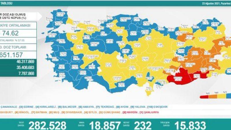 Türkiye'de koronavirüsten 232 kişi daha hayatını kaybetti!