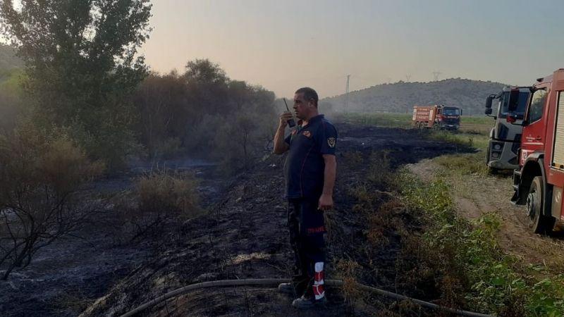 Ateş savaşçılarının hızlı müdahalesi zeytin ağaçlarını korudu