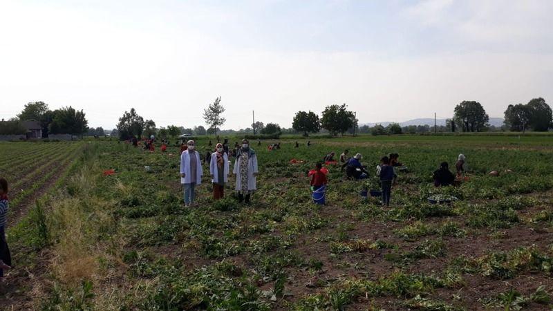 Mevsimlik işçilere sağlık taraması yapıldı