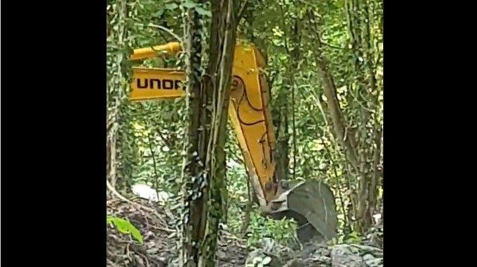 Ormana yazık ediyorlar