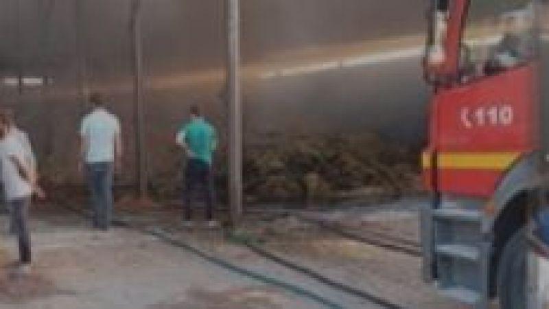 Tavuk çiftliğinde yangın çıktı