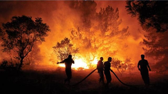 Sakaryalı ormancılar yangın bölgesinde