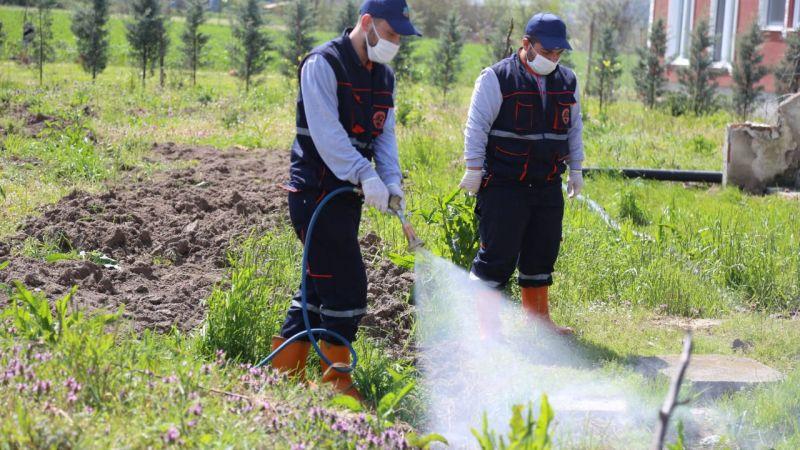 Serdivan'da ilaçlama sürüyor