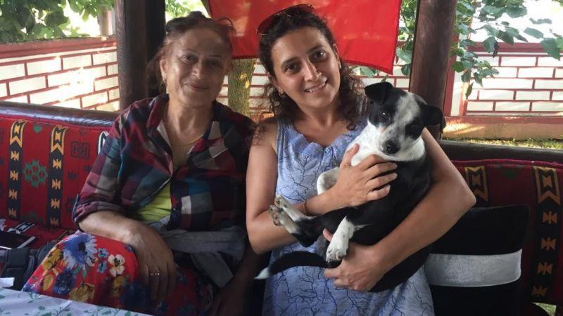 Kaybolan köpek için konan ödülle hayvanlara mama aldı