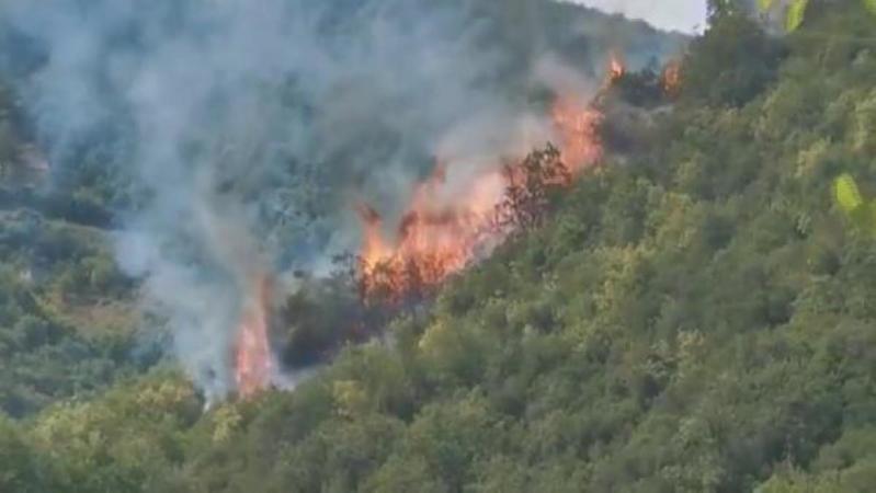 İstanbul Sarıyer'de orman yangını