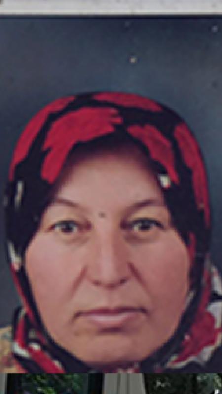 Kaybolan kadın baygın halde bulundu