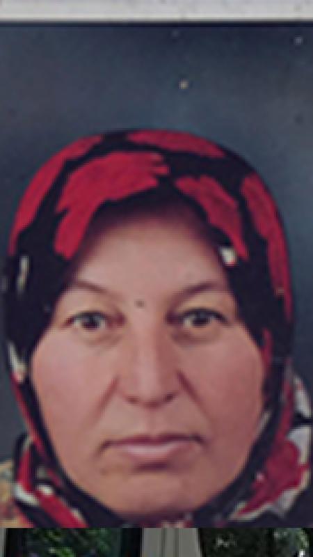 Hendek'te kaybolan kadın aranıyor
