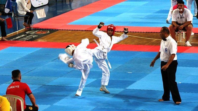 Wushu Şampiyonası Serdivan'da yapıldı