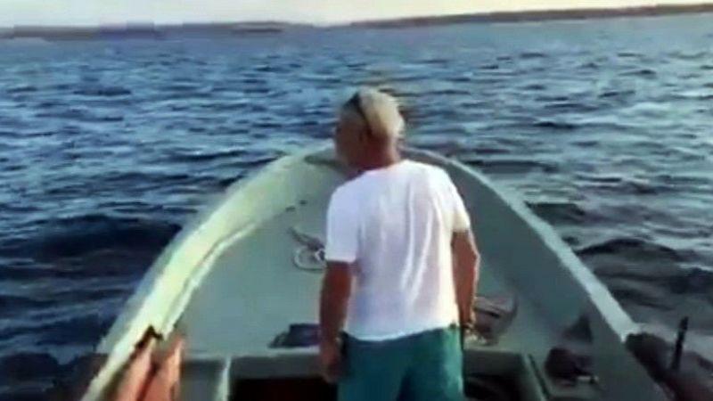 Karasu'da yunuslar tekneyle yarıştı