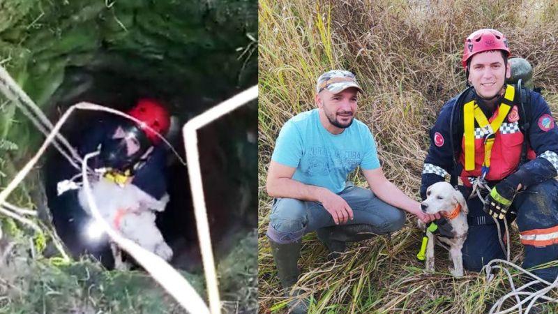 Kuyuya düşen av köpeğini kurtardılar