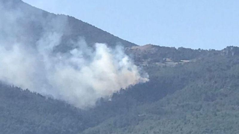 Pamukova'da orman yangını