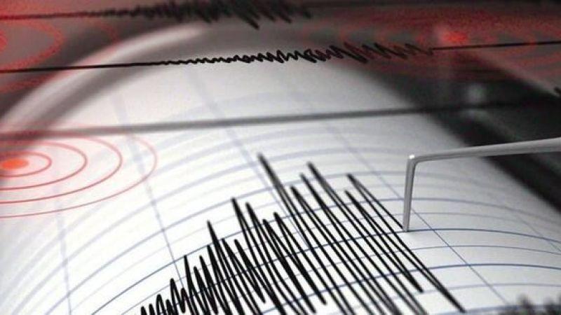 Balıkesir'de korkutan deprem! Sallandık