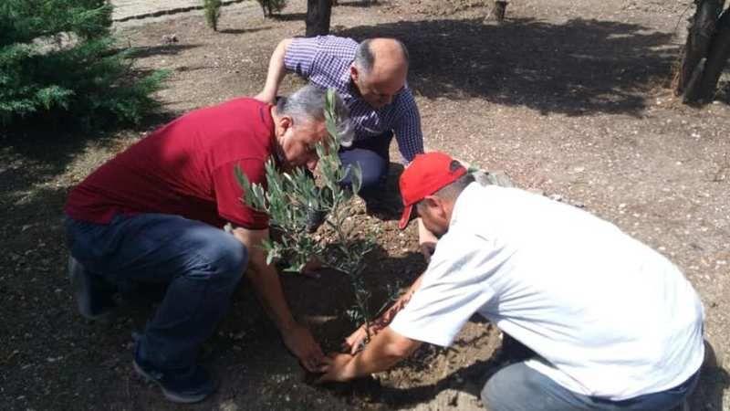 Ayvalık MYO zeytin fidanlarını toprakla buluşturdu