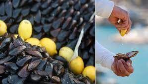 Edremit Kaymakamlığı'nın yeni midye satışı kararı