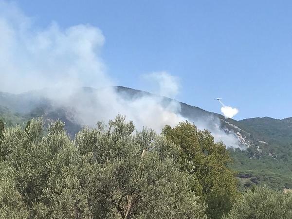 Balıkesir Valisi, Kazdağlarındaki yangın hakkında konuştu