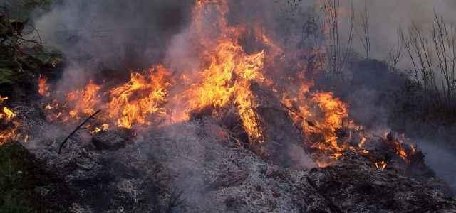 Orman yangınları devam ediyor