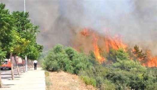 Ormanda  iki kez yangın çıktı