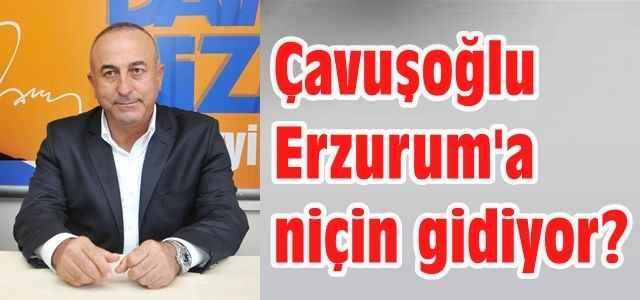 Çavuşoğlu Erzurum yolcusu