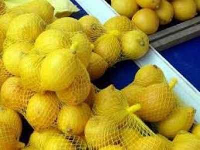 Limonun kilosu dudak uçuklattı