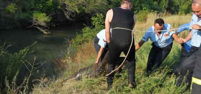 Cesedi sulama kanalında bulundu