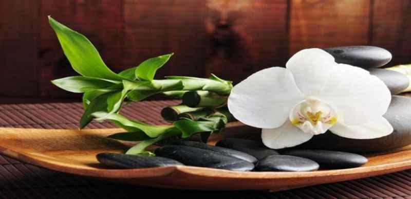 Afrodizyak etkili masaj yağı tarifi