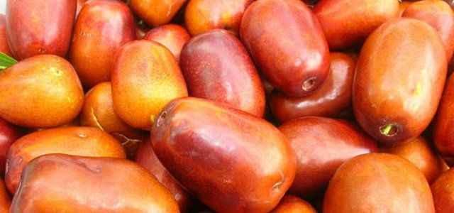 Bu meyve şifa kaynağı