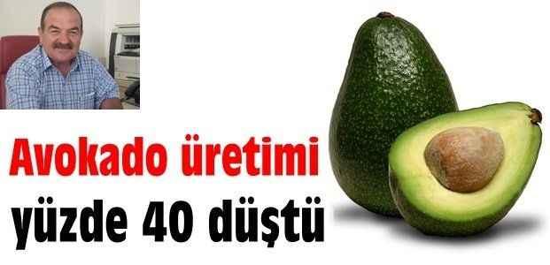 Avokado üretimi yüzde 40 düştü