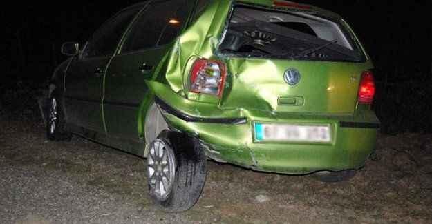 Yola çıkan hayvan zincirleme kazaya neden oldu