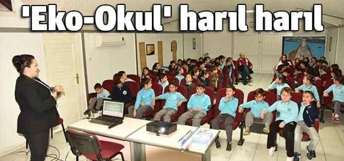 'Eko-Okul' harıl harıl